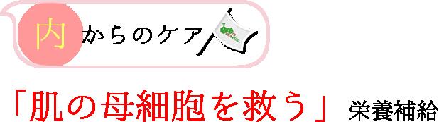 「肌の母細胞を救う」栄養補給