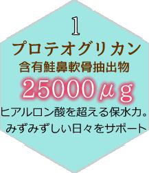 プロテオグリカン25000μg