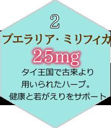 ブエラリア・ミリフィカ25mg