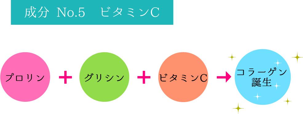 成分 No.5 ビタミンC