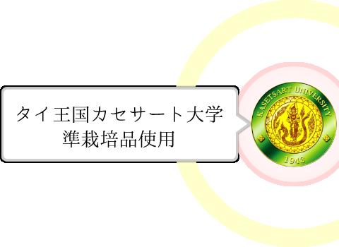 タイ王国カセサート大学準栽培品使用