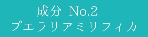 成分 No.2 プエラリアミリフィカ