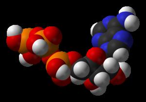1024px-ATP-3D-vdW